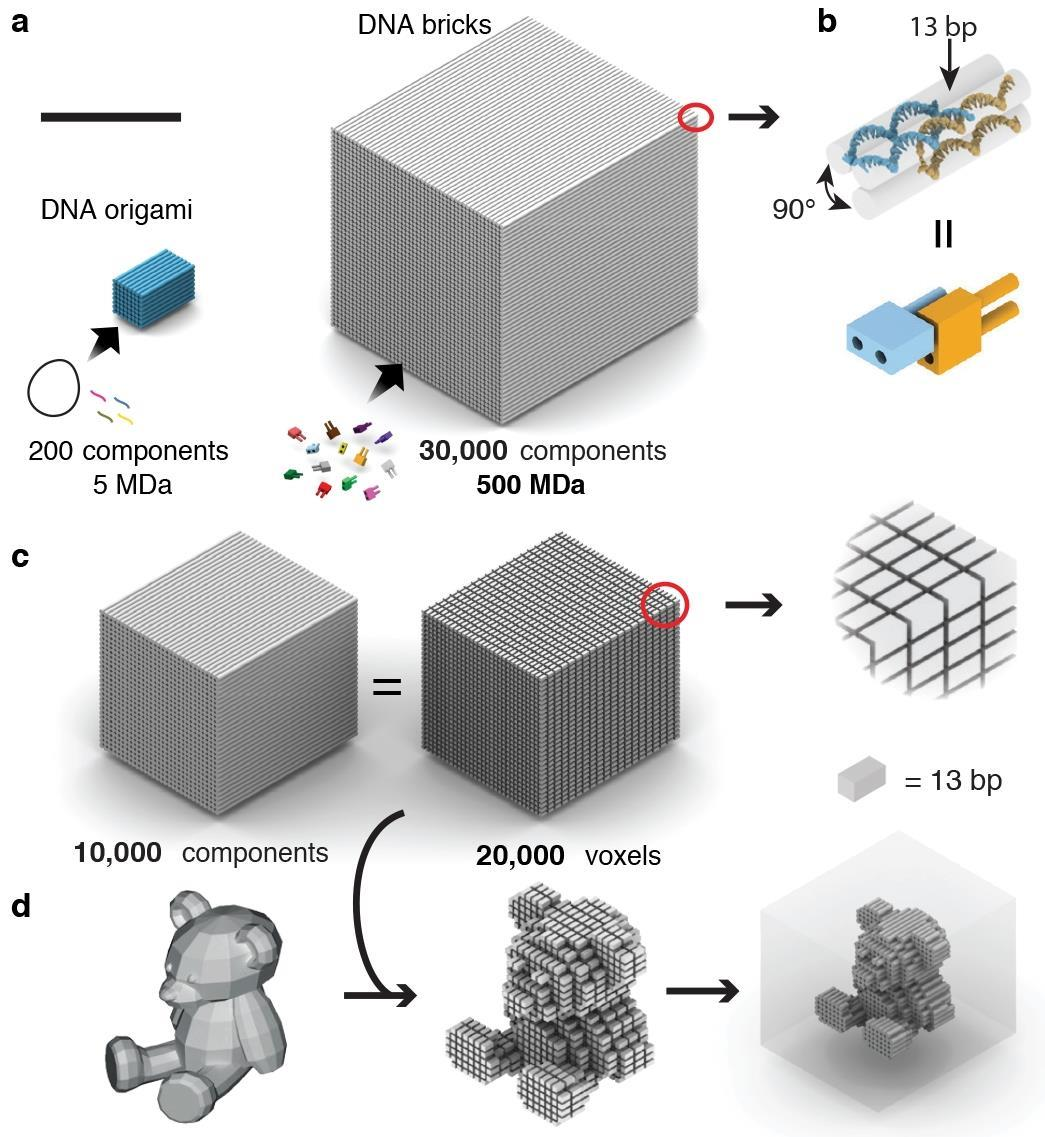 Dna Origami Makes It Big Research Chemistry World
