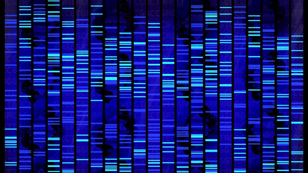 Its Genome Was Sequenced Last Year But >> Human Genome Sequenced By Handheld Device Research Chemistry World