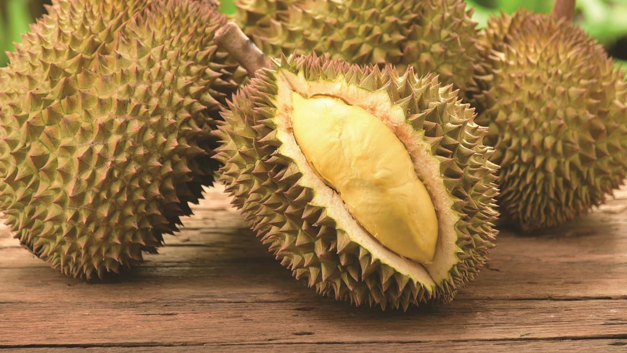 What is the taste of DURIAN, the most smelly fruit in the world