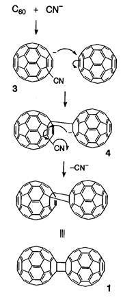 Proposed reaction mechanism for a fullerene dimer