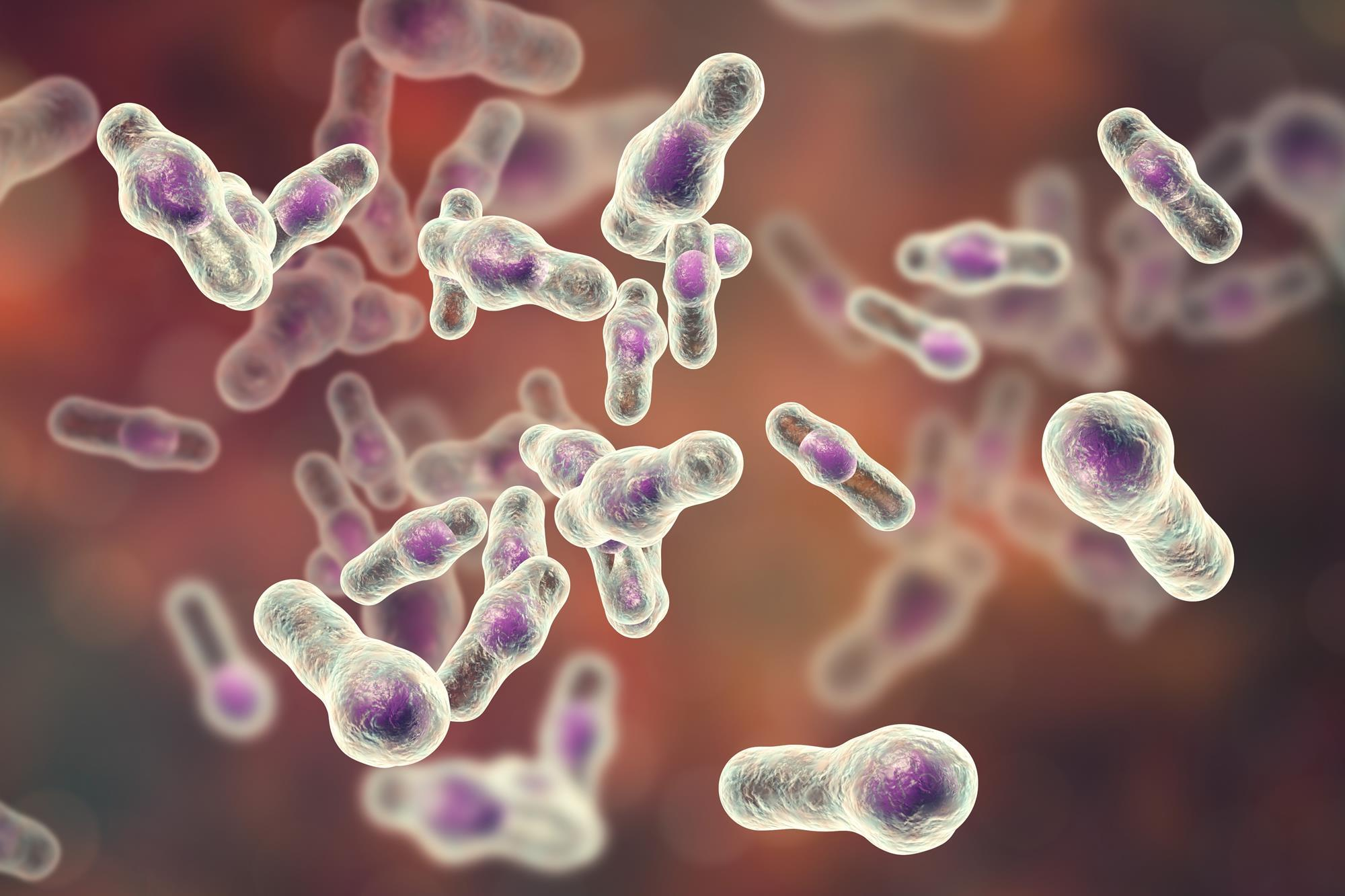 Switching to sulfur stops deadly bacteria growth