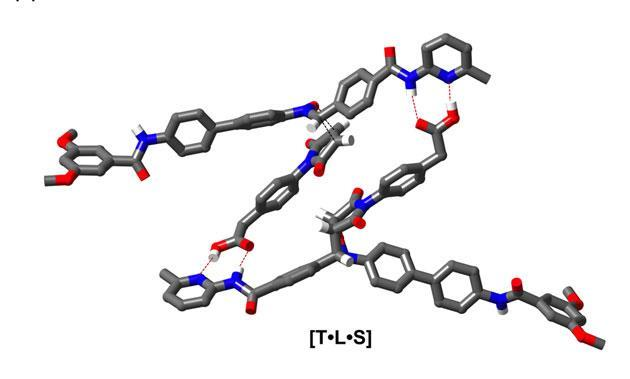 Rotaxane raises the bar for self-replicating chemical systems