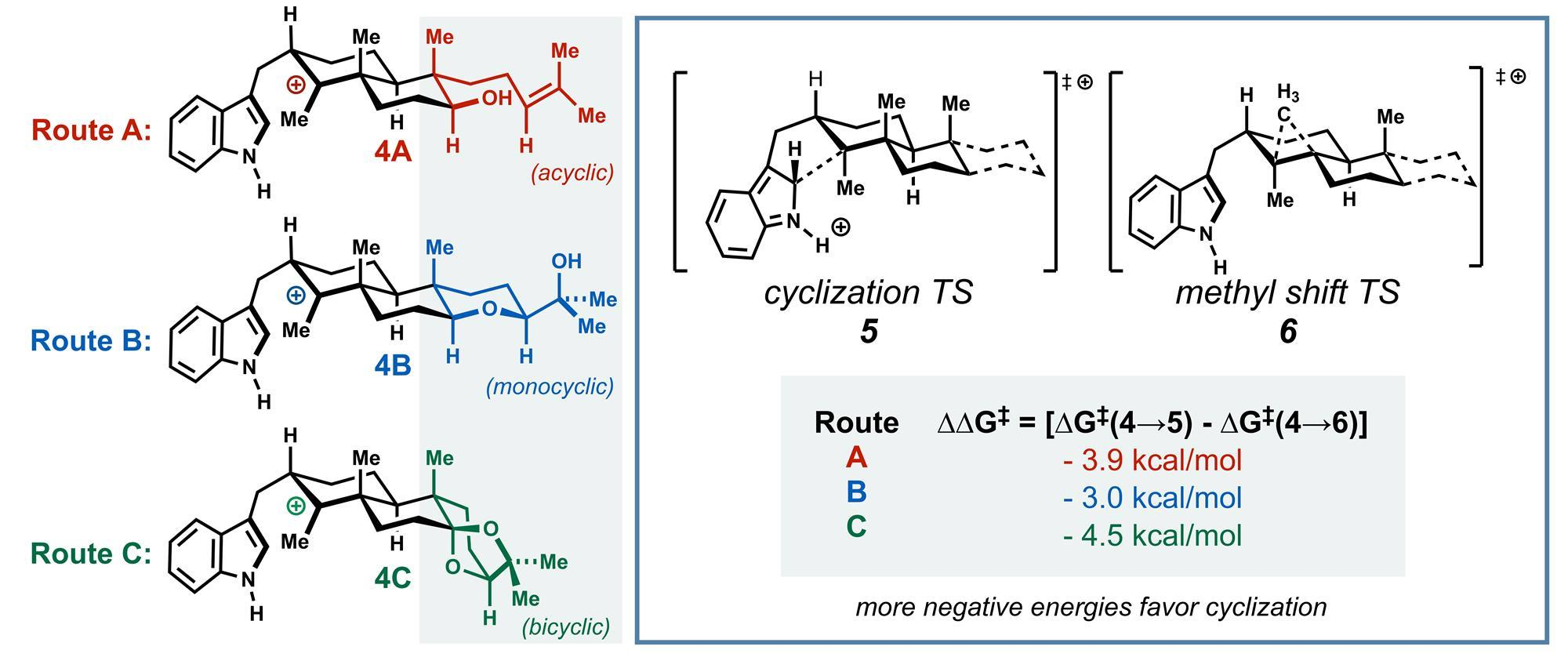 Computation trick cuts total synthesis from 27 to nine steps