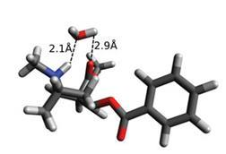 Cocaine-structure_c5cp06090g-f7_300m