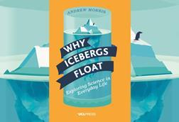 Why icebergs float index