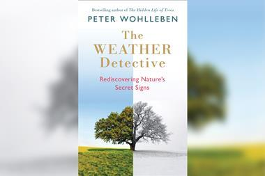 A picture of The Weather Detective Book Cover