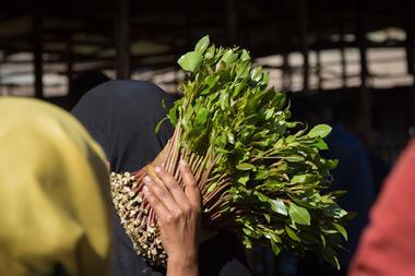 Woman purchasing khat in awaday khat market