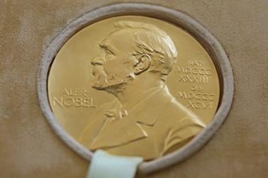 A photograph of the Nobel Prize of George Emil Palade