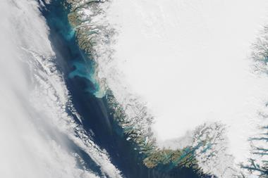 Satellite image showing sedimentary plumes seen off the coast Greenland
