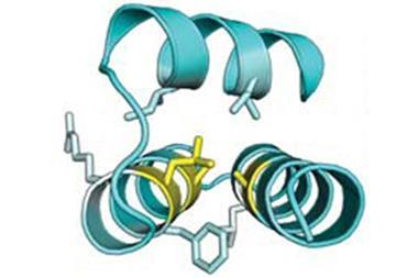 Designing proteins HHH rd3 0138
