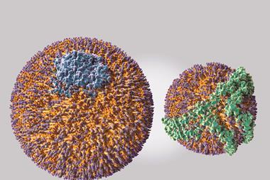 Low density lipoprotein (LDL) molecule (on the left) & a high density lipoprotein (HDL) molecule (on the right)