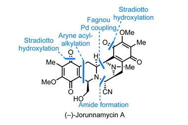 chemistry news research and opinions  chemistry world an image showing the structure of jorunnamycin