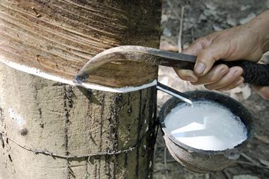 Tapping natural rubber