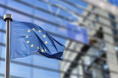 EU flag outside European parliament building