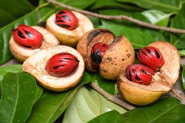 Nutmeg fruit and seeds