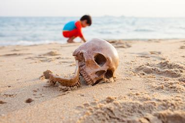 A photograph of a skull on a beach