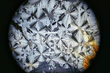 Microscope image of paracetamol in crystallized form