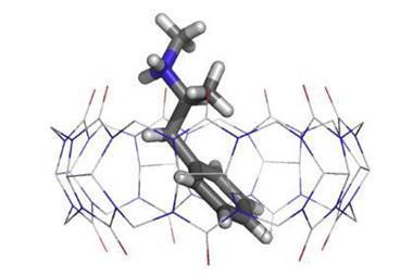 X ray single crystal structure of Cucurbit[7]uril binding an amphetamine