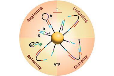 DNA nanomachine