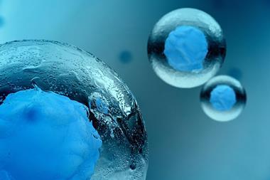 Individual cells