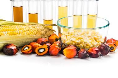 Maize corn and oil palm derived biofuel in test tubes