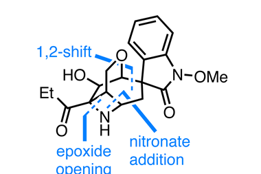 Organic Matter, Gelsemoxonine structure