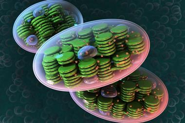 An illustration of a cellular organelle