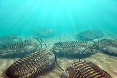 Trilobites scavenging on the ocean floor - Main