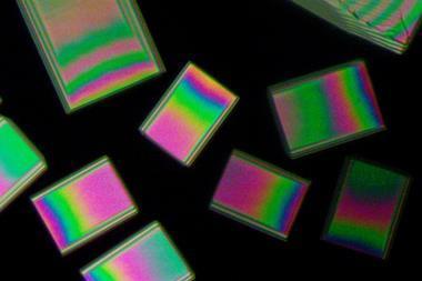 An optical image of the metacetamol crystals