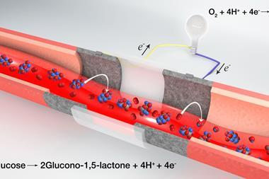 Scheme of blood vessel fuel cell