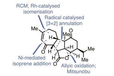 Organic Matter - Pavidolide
