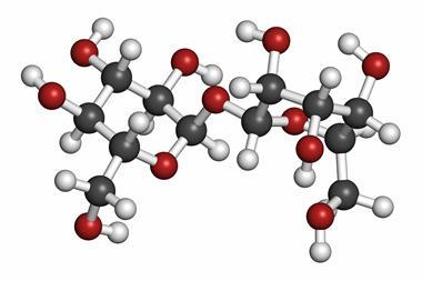 Trehalose (mycose, tremalose) sugar molecule. Atoms are represented as spheres with conventional color coding: hydrogen (white), carbon (grey), oxygen (red)