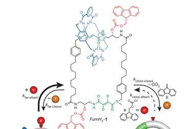 MolecularmotorNature 2