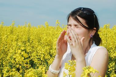 Sneezing in a field