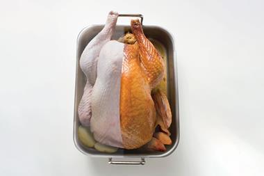 Half-cooked turkey