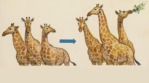 Evolution according to Darwin - giraffes drawing