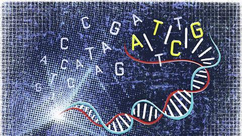 An image showing a DNA strand and letter representation of its bases