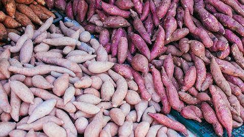 Fresh tubers in a market