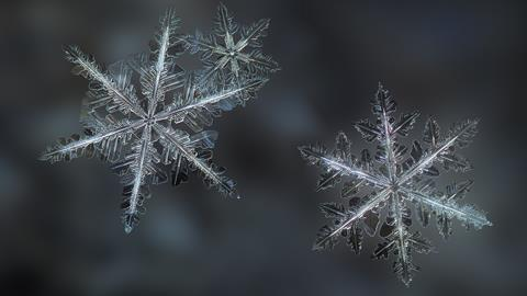 A photograph of snowflakes