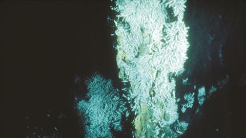 Hydrothermal vent discovered by Susan Humphris in 1986 Atlantic expedition