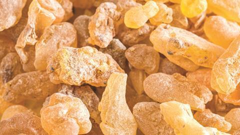 frankincense i stock 42594686 large