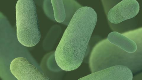 3D rendering of hairy fuzzy green bacteria on a green background