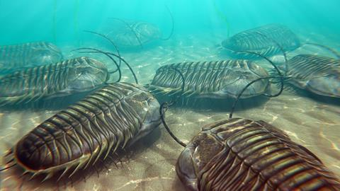 Trilobites scavenging on the ocean floor