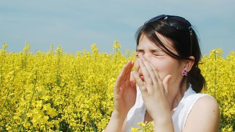 Sneezing in a field