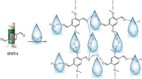 molecular glue for sensing water