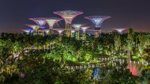 A photograph of the Supertree Grove in Singapore's Gardens by the Bay