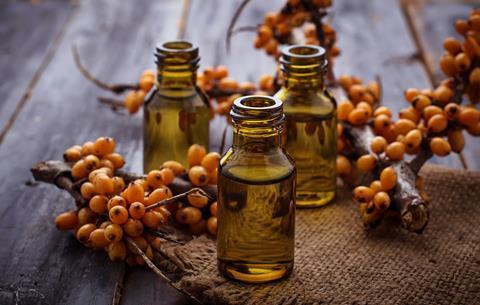Sea buckthorn berries and oil