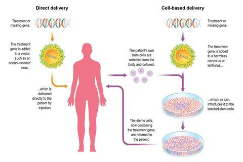 A diagram showing gene therapy delivery methods
