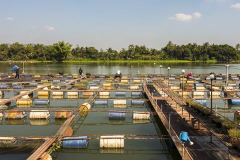 A photograph of a fish farm