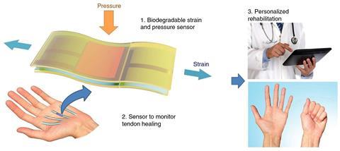 Illustration of the biodegradable and stretchable strain and pressure sensor